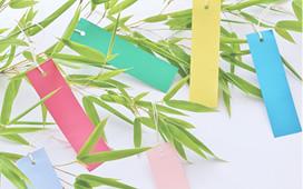 季節行事(夏祭り・敬老会・クリスマス会・正月・節分・花見)